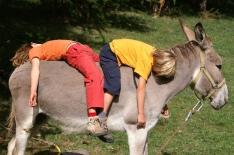 Queyr'âne