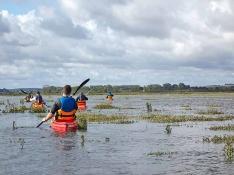 Balade en kayak au coeur de l'estuaire de l'Orne