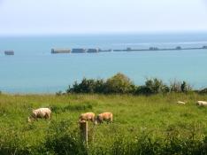 Normandy Panorama