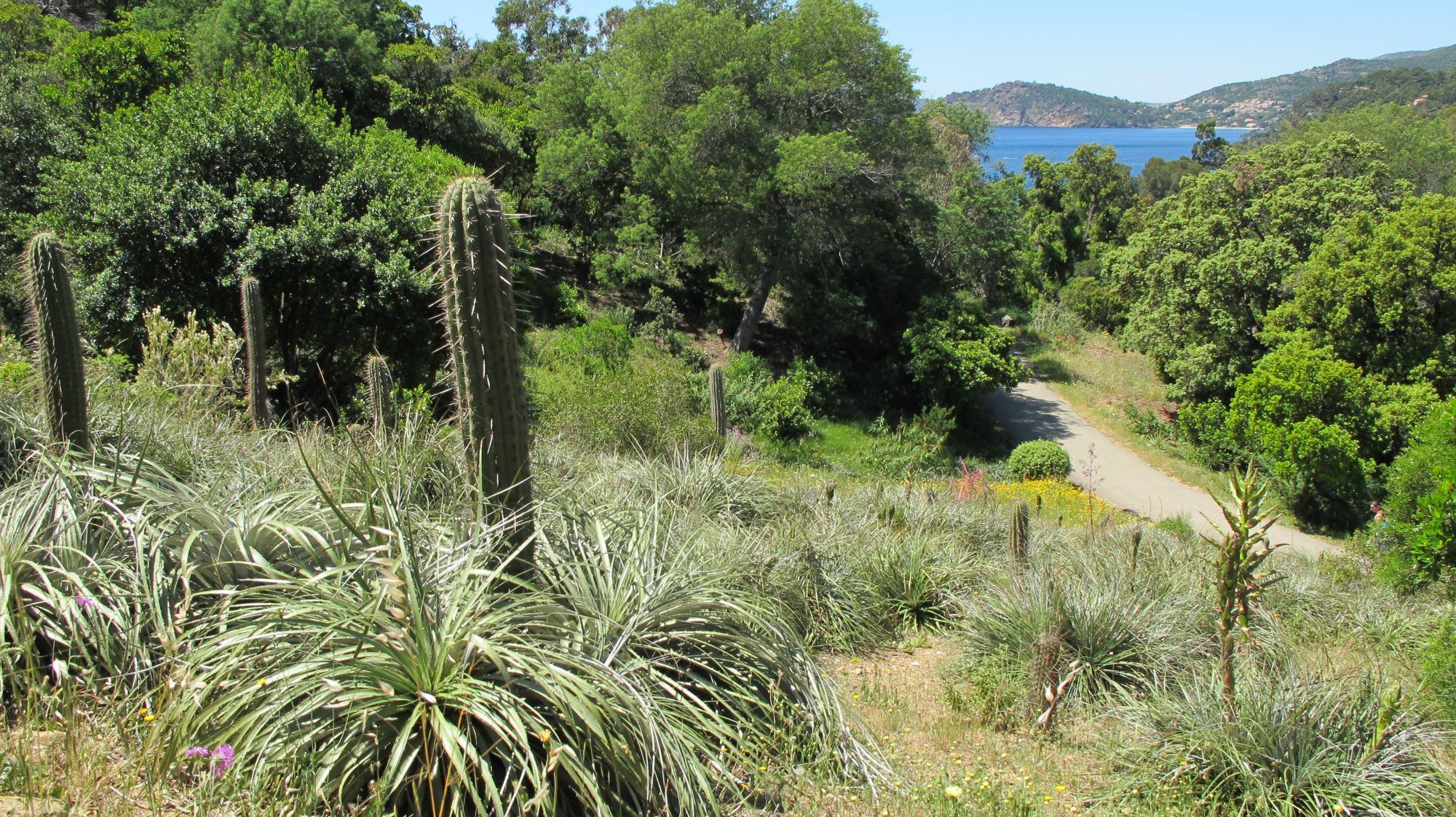 Domaine du Rayol Le Jardin des Méditerranées sorties nature