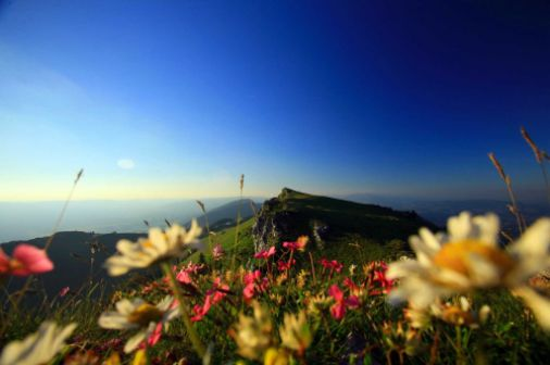 La région Rhône-Alpes, terre de contrastes
